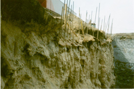 Soil Stabilization & Remediation